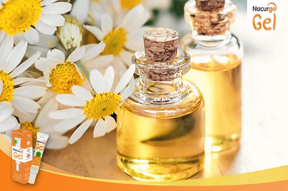 Cách trị mụn bằng tinh dầu hoa cúc
